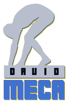 David Meca